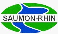 Association Saumon-Rhin