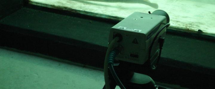 La webcam en direct reprend du service!